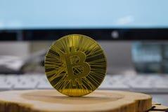 Guld- bitcoin på bakgrunden royaltyfri bild