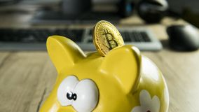 Guld- bitcoin på spargrissparbössan med en dator på bakgrund Cryptocurrency investeringbegrepp BTC-mynt som Royaltyfria Bilder