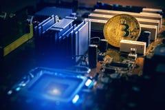 Guld- bitcoincryptocurrency på boa för elektronisk strömkrets för dator Royaltyfri Fotografi
