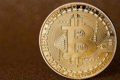Guld- bitcoincryptocurrency på brun bakgrund royaltyfria bilder
