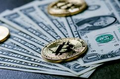 Guld- bitcoinmynt på en pappers- dollarpengar- och mörkerbakgrund med solen Faktisk valuta Crypto valuta nya faktiska pengar Royaltyfria Foton