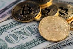 Guld- Bitcoins och sedlar av en dollar Bitcoins på US dollar royaltyfri fotografi