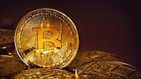 Guld- Bitcoins på en guld- bakgrund Royaltyfri Foto