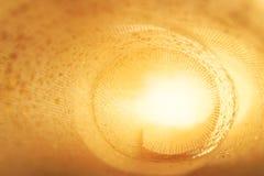guld- blänka textur Textilrulle med ljus inom Inskriften av rött färgar lokaliserat över text av vit färgar abstrakt bakgrund Blu Arkivbild
