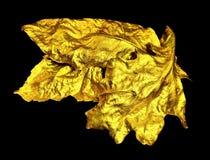 Guld- blad. royaltyfria foton