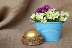 Guld- blommor för påskägg och vår Arkivbilder