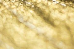 Guld- Bokeh abstrakt bakgrund Arkivbilder