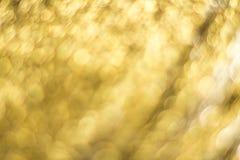 Guld- Bokeh abstrakt bakgrund Royaltyfri Fotografi
