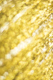 Guld- Bokeh abstrakt bakgrund Arkivfoto