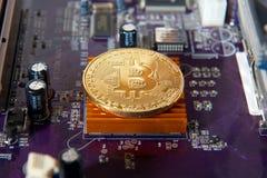 Guld- bräde för processor Bitcoin för elektronisk dator Royaltyfri Foto