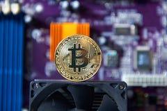 Guld- bräde för processor Bitcoin för elektronisk dator Arkivbild
