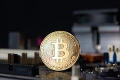 Guld- bräde för processor Bitcoin för elektronisk dator Fotografering för Bildbyråer