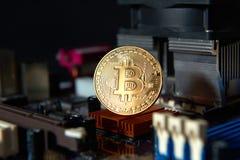 Guld- bräde för processor Bitcoin för elektronisk dator Royaltyfri Bild