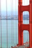 guld- broport fotografering för bildbyråer