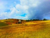 Guld- brunt för landshus Arkivbilder