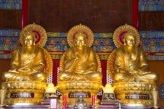 guld- buddha Arkivbild