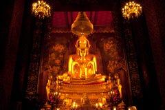 guld- buddha favorit Royaltyfri Foto