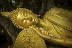 Guld- buddha i Laos Royaltyfria Foton