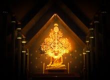 Guld- Buddha i natten Arkivbilder