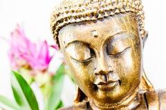 Guld- buddha med ljus bakgrund arkivbild