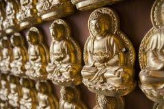 Guld- buddha modell Royaltyfri Fotografi