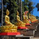 Guld- Buddha på trappan till Wat Lung Pa Yai Royaltyfria Bilder