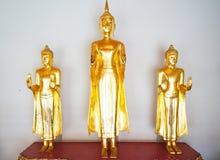 Guld- Buddha på Wat Pho Bangkok, Thailand Royaltyfri Bild