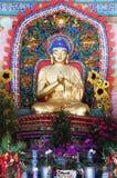 Guld- Buddha staty Arkivbild
