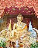 guld- buddha staty i den Wat Chai Mongkon templet, Chiangmai, Thailand Royaltyfri Foto