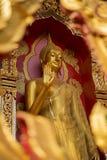 Guld- buddha staty i tempel Arkivfoto