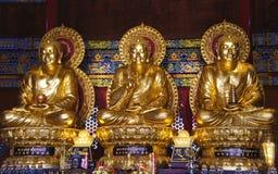 Guld- buddha staty på den Mangkon Kamalawat templet Arkivbild
