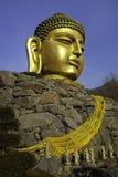 Guld- Buddhahuvud Fotografering för Bildbyråer