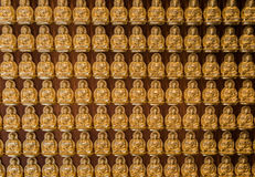 Guld- buddhas ställde upp längs väggen av den kinesiska templet Royaltyfri Foto