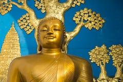 Guld- Buddhastaty Fotografering för Bildbyråer