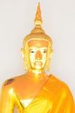Guld- Buddhastaty (guld- Buddha) på Wat Pho Royaltyfria Bilder