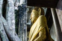 Guld- Buddhastaty i Wat Bang Kung, Ampawa, Thailand Arkivbilder