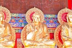 Guld- Buddhastatyer av en kinesisk tempel Royaltyfri Fotografi
