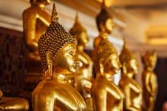 Guld- Buddhastatyer i buddistisk tempel royaltyfri fotografi