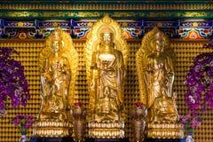 Guld- Chainese BuddhaLeng Noei Yi 2 tempel royaltyfri foto