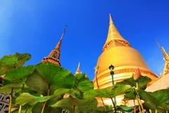 Guld- Chedi på Wat Phra Kaew royaltyfria foton