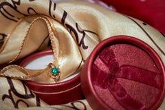 guld- cirkel Royaltyfri Bild