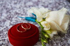 Guld- cirklar för att gifta sig Royaltyfria Foton