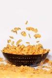 Guld- cornflakes som faller i en isolerad bunke - Fotografering för Bildbyråer