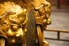 Guld- demonhuvud Royaltyfria Foton