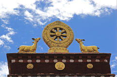 Guld- Dharma hjul Royaltyfri Foto