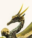Guld- Dragon Gazing At Skull Arkivbild