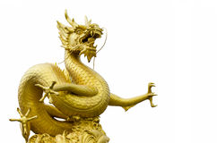 Guld- Dragon Sculpture Figure Art China i det Phuket landskapet Thaila Arkivfoto
