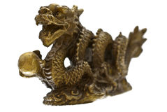 guld- drake Royaltyfria Bilder