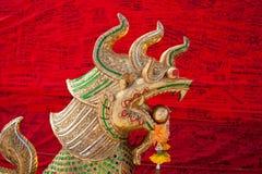 guld- drake Royaltyfri Fotografi