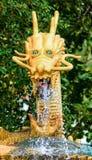guld- drake Royaltyfria Foton